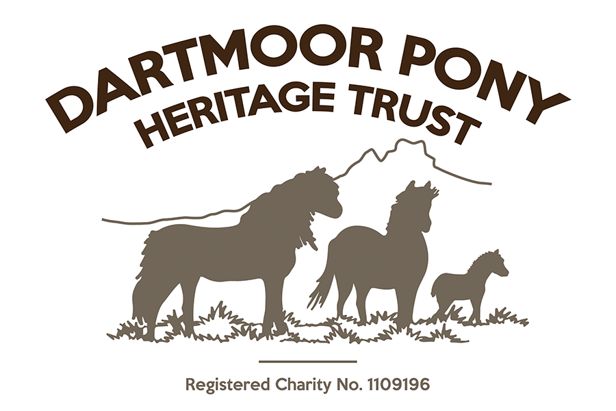 Dartmoor Pony HT_900x600 logo