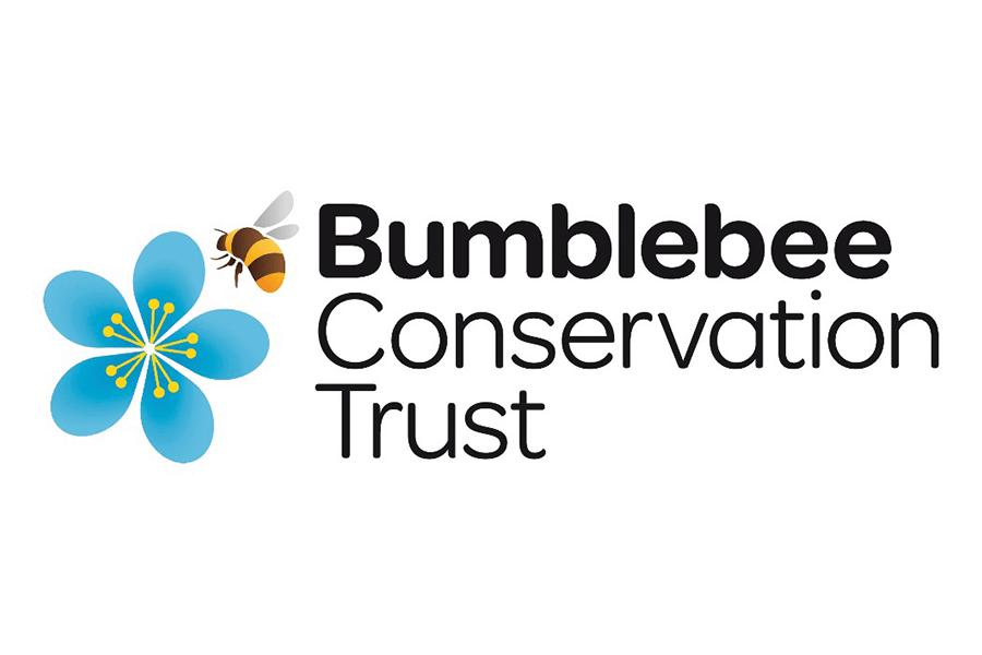 Bumblebee CT_900x600 Logo