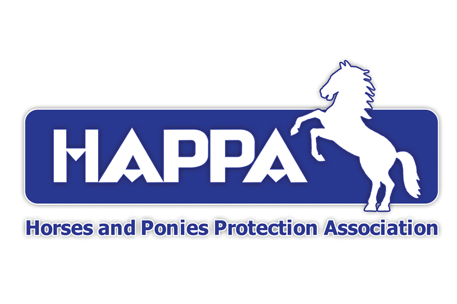 Happa_900x600 logo