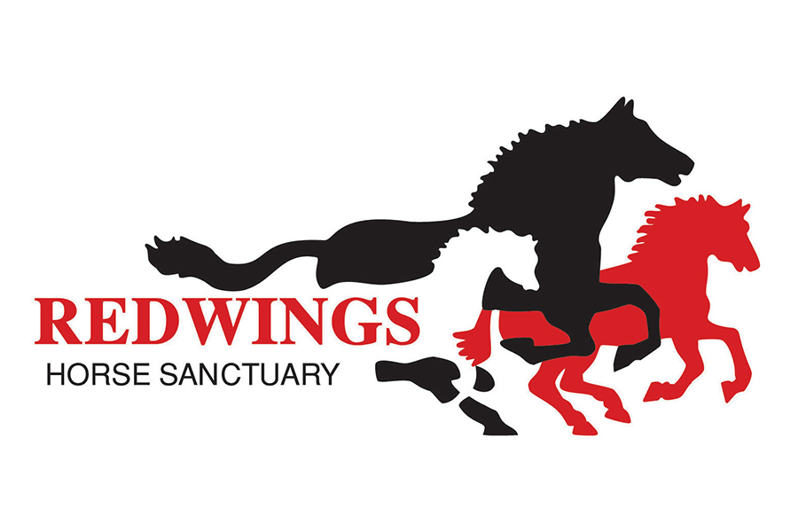 Redwings_900x600 logo